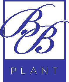 BB Plant / callakwekerij